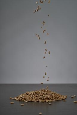 toasted-rye