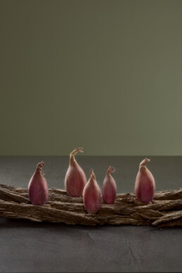 shallots-food-drink-photography-berlin